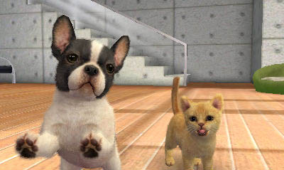 Nintendogs  cats tips and tricks