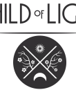 COL_logo_DD_130910_9