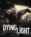Dying Light logo splash