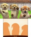N3DS_Nintendogscats_golden_01