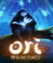 Ori and the Blind Forest is set for release on March 11, 2015 and will cost $19.99.